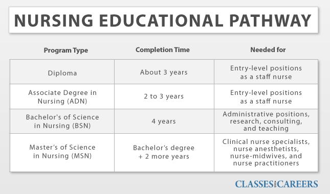 Bachelor of science nurses bsn vs associate degree nurses adn essay ...